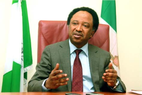 Nigeria: Idea Of Recalling Senator Shehu Sani Vindictive, Fraudulent — Kaduna Group