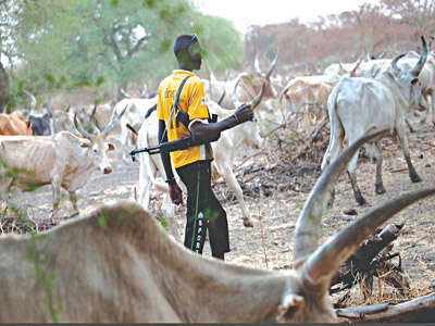 Nigeria Police Can't Arrest Herdsmen For Open Grazing, Unless… — Inspector General