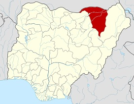 Environment Nigeria: Flood Ravages 10 Out of 17 Yobe LGAs—Official