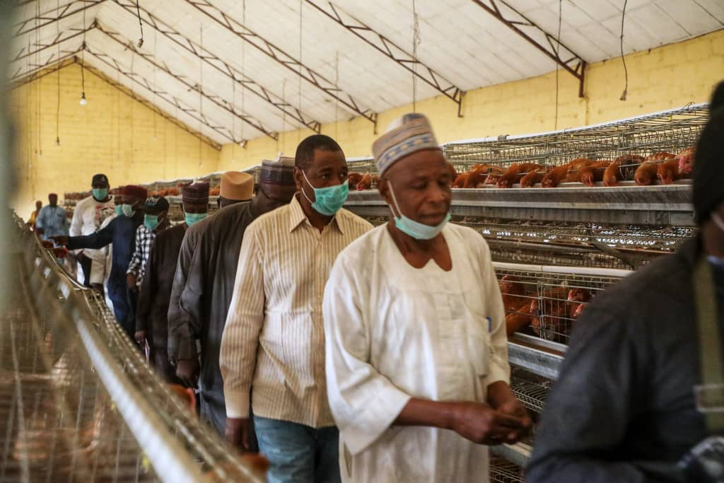Nigeria : Zulum Visits Poultry Unit, Tasks Commissioner, Others On Productivity