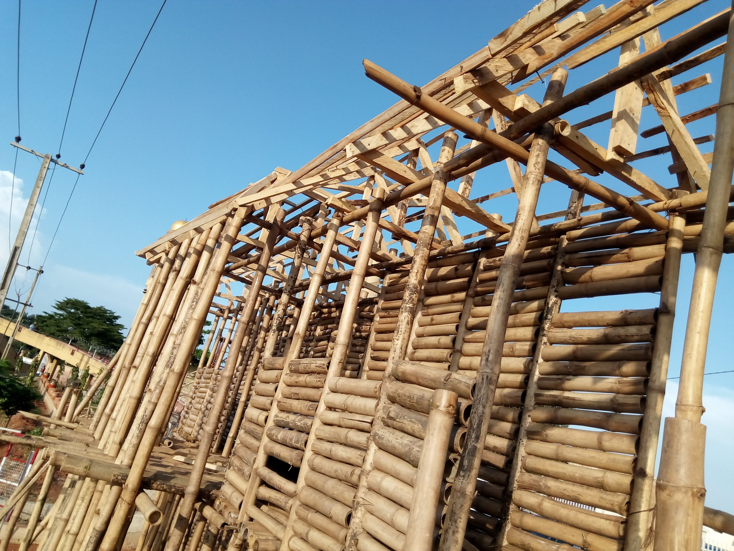 Nigerian horticulturist constructs storey  building with bamboo trees.